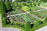 One of the many gardens where old varieties are grown. Photo: ProSpecieRara